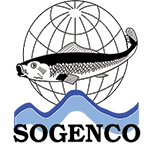 Sogenco Global Conseil Maroc